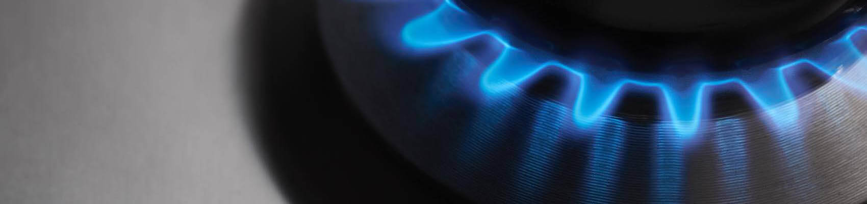 Dostawcy gazu w Niemczech